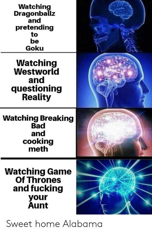 Westworld: Watching  Dragonballz  and  pretending  to  be  Goku  Watching  Westworld  and  questioning  Reality  Watching Breaking  Bad  and  cooking  meth  Watching Game  Of Thrones  and fucking  your  Aunt Sweet home Alabama