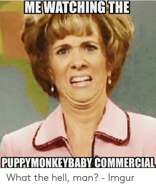 What The Hell Meme: WATCHING THE  ME  PUPPYMONKEYBABY COMMERCIAL