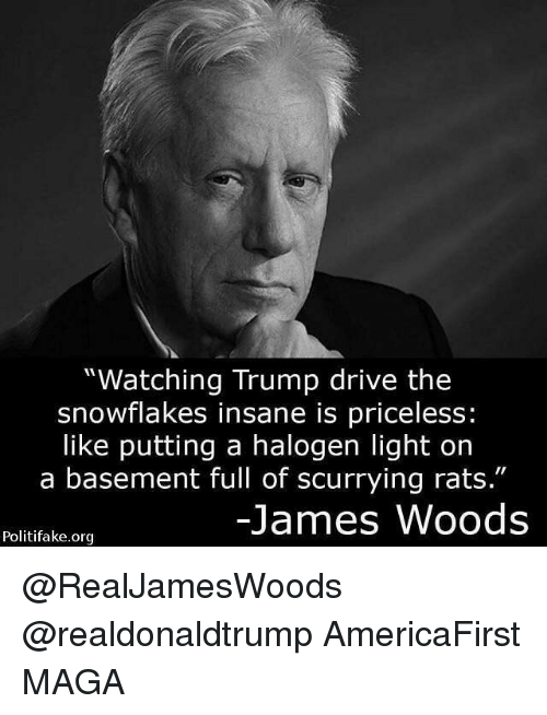 """Memes, James Woods, and 🤖: """"Watching Trump drive the  snowflakes insane is priceless:  like putting a halogen light on  a basement full of scurrying rats.""""  James Woods  Politifake.org @RealJamesWoods @realdonaldtrump AmericaFirst MAGA"""