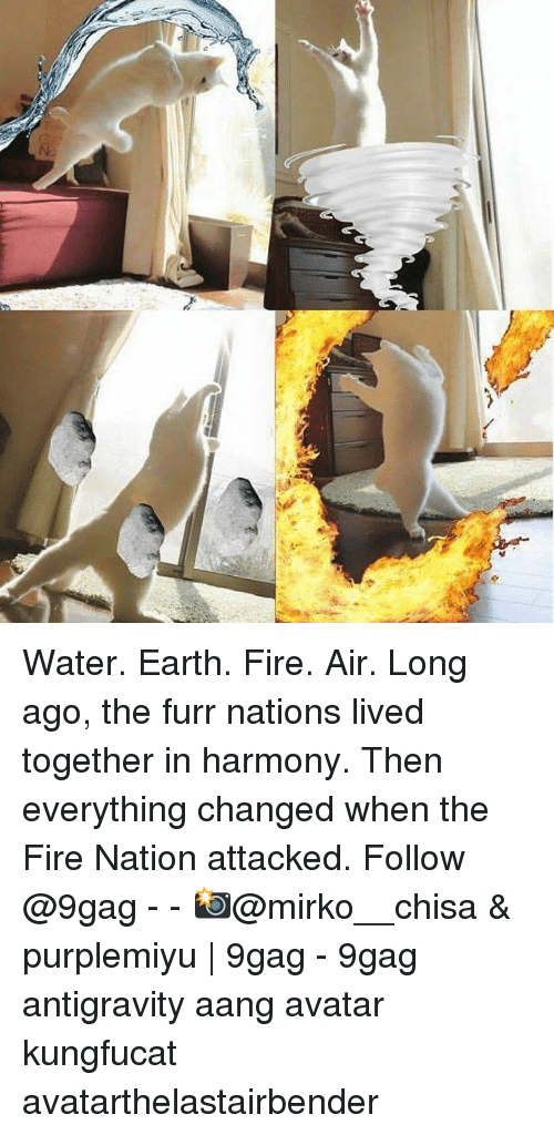 Aang: Water. Earth. Fire. Air. Long ago, the furr nations lived together in harmony. Then everything changed when the Fire Nation attacked. Follow @9gag - - 📸@mirko__chisa & purplemiyu | 9gag - 9gag antigravity aang avatar kungfucat avatarthelastairbender