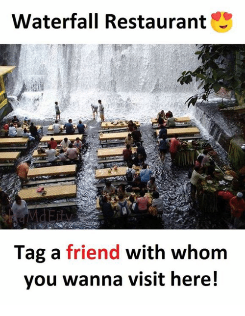 Memes, Restaurant, and 🤖: Waterfall Restaurant  Tag a friend with whom  you wanna visit here!