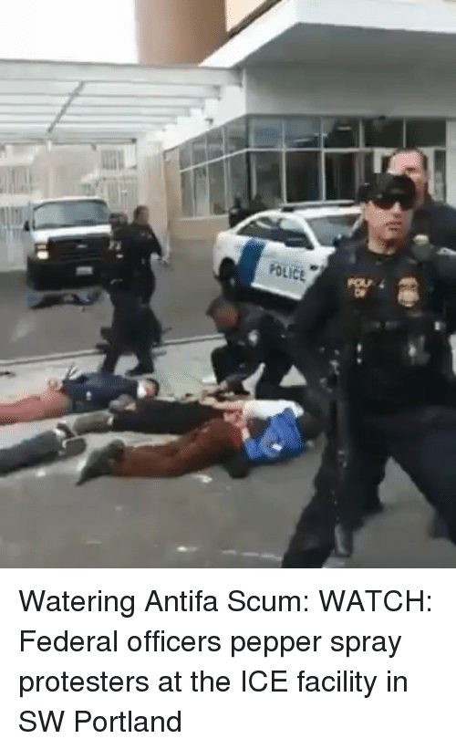 Memes, Watch, and 🤖: Watering Antifa Scum: WATCH: Federal officers pepper spray protesters at the ICE facility in SW Portland