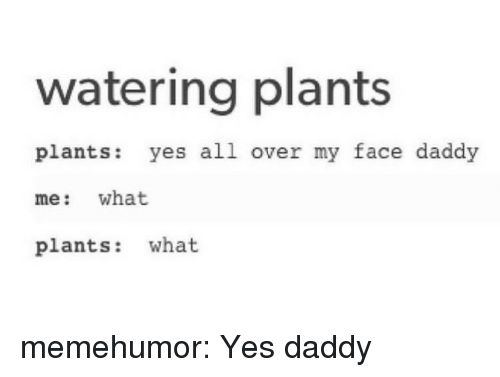 Yes Daddy: watering plants  plants: yes all over my face daddy  me: what  plants: what memehumor:  Yes daddy
