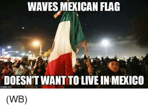 mexican flag: WAVES MEXICAN FLAG  DOESNT WANT TO LIVE IN MEXICO  imgfip.com (WB)