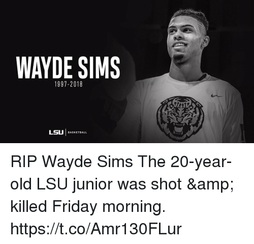 lsu: WAYDE SIMS  1997-2018  LSU | BASKETBALL RIP Wayde Sims  The 20-year-old LSU junior was shot & killed Friday morning. https://t.co/Amr130FLur