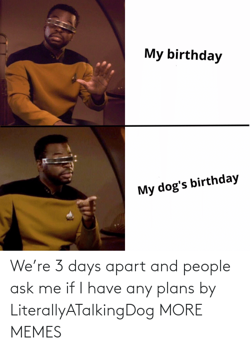 3 Days: We're 3 days apart and people ask me if I have any plans by LiterallyATalkingDog MORE MEMES