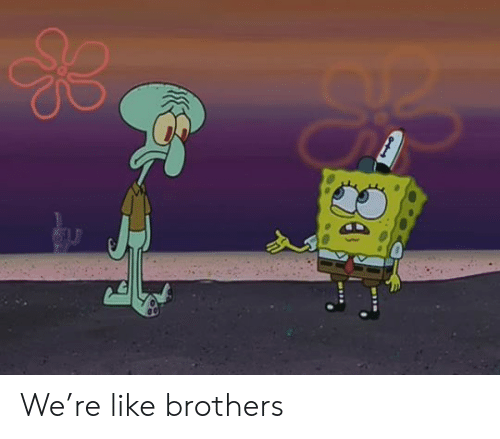 brothers: We're like brothers