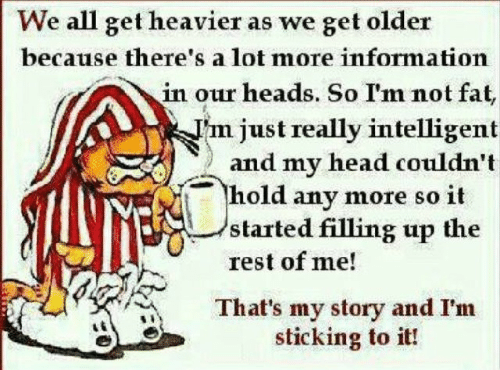 Im Not Fat: We all get heavier as we get older  because there's a lot more information  in our heads. So I'm not fat,  justreally intelligent  ) and my head couldn't  hold any more so it  started filling up the  rest of me!  That's my story and I'm  sticking to it!