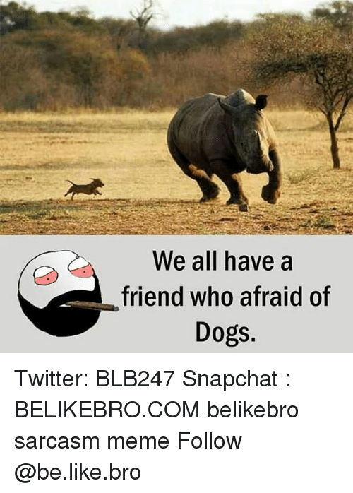 Be Like, Dogs, and Meme: We all have a  friend who afraid of  Dogs. Twitter: BLB247 Snapchat : BELIKEBRO.COM belikebro sarcasm meme Follow @be.like.bro