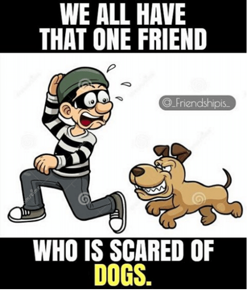 Friendshipis: WE ALL HAVE  THAT ONE FRIEND  Friendshipis  WHO IS SCARED OF  DOGS.