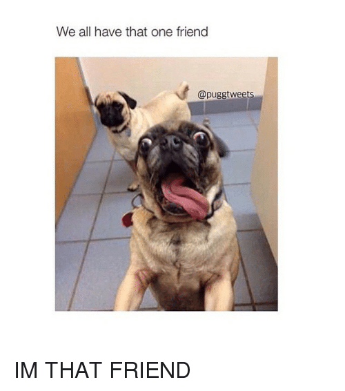 We All Have That One Friend Im That Friend Friends Meme On