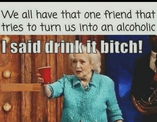 Alcoholic: We all have that one friend that  tries to turn us into an alcoholic  Isaid drink it bitch!