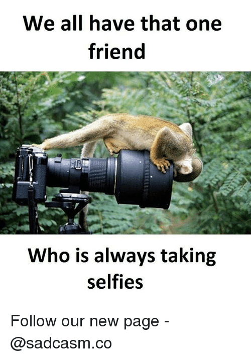 Memes, 🤖, and Page: We all have that one  friend  Who is always taking  selfies Follow our new page - @sadcasm.co