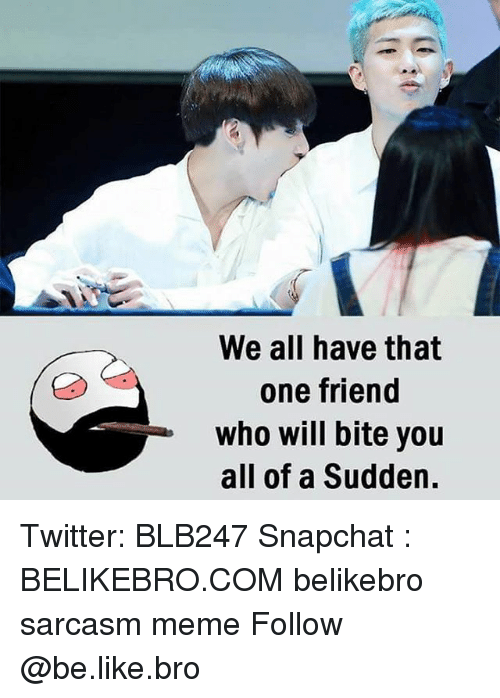 Be Like, Meme, and Memes: We all have that  one friend  who will bite you  all of a Sudden. Twitter: BLB247 Snapchat : BELIKEBRO.COM belikebro sarcasm meme Follow @be.like.bro