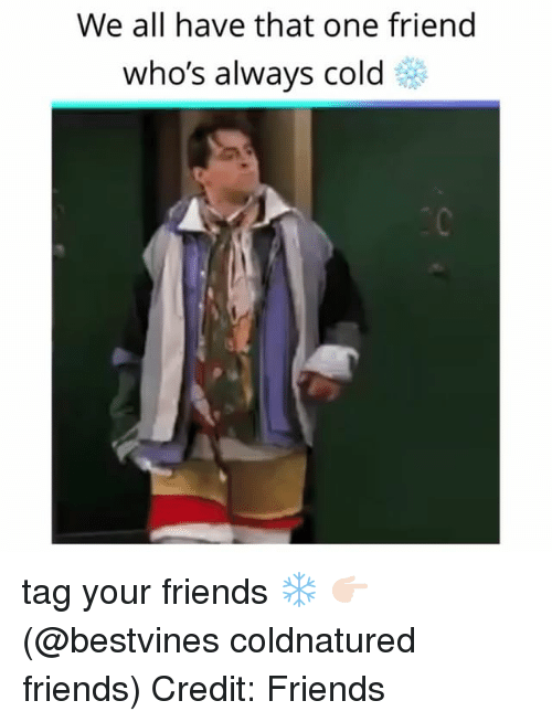 Friends, Memes, and Cold: We all have that one friend  who's always cold tag your friends ❄️ 👉🏻(@bestvines coldnatured friends) Credit: Friends