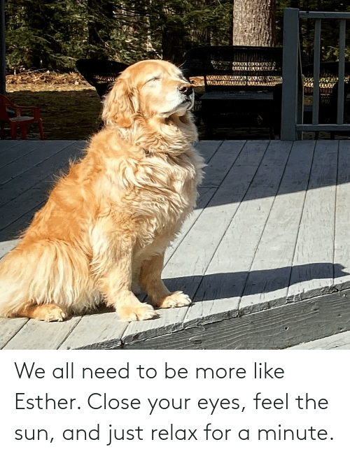 close your eyes: We all need to be more like Esther. Close your eyes, feel the sun, and just relax for a minute.