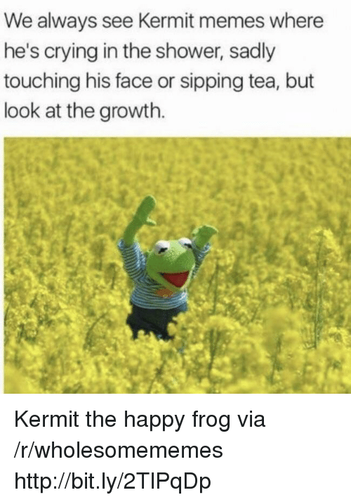 Sipping: We always see Kermit memes where  he's crying in the shower, sadly  touching his face or sipping tea, but  look at the growth. Kermit the happy frog via /r/wholesomememes http://bit.ly/2TlPqDp