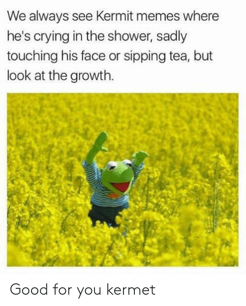 kermit: We always see Kermit memes where  he's crying in the shower, sadly  touching his face or sipping tea, but  look at the growth. Good for you kermet