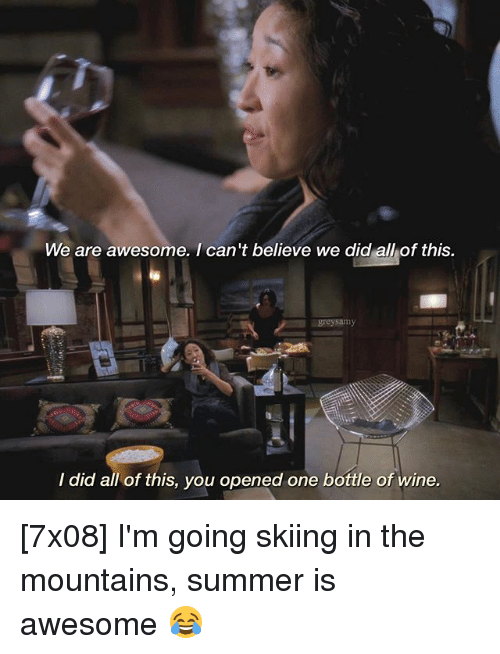 Memes, Wine, and Summer: We are awesome. I can't believe we did all of this.  greysamy  I did all of this, you opened one bottle of wine. [7x08] I'm going skiing in the mountains, summer is awesome 😂