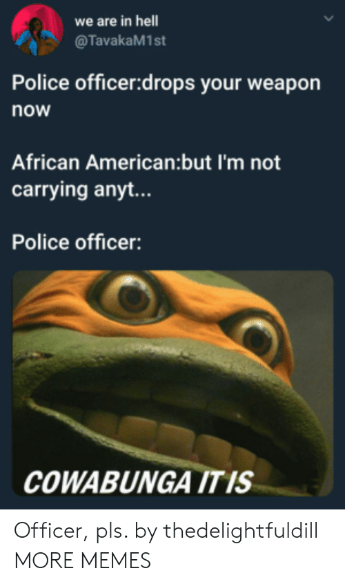 african american: we are in hell  @TavakaM1st  Police officer:drops your weapon  now  African American:but I'm not  carrying anyt...  Police officer:  COWABUNGA ITIS Officer, pls. by thedelightfuldill MORE MEMES