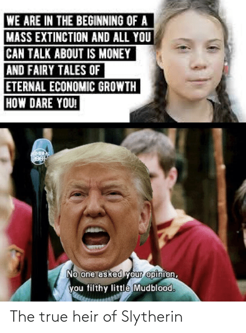 Money, Reddit, and Slytherin: WE ARE IN THE BEGINNING OF A  MASS EXTINCTION AND ALL YOU  CAN TALK ABOUT IS MONEY  AND FAIRY TALES OF  ETERNAL ECONOMIC GROWTH  HOW DARE YOU!  MIMBES  HOOG  No one asked your opinion,  you filthy little Mudblood. The true heir of Slytherin