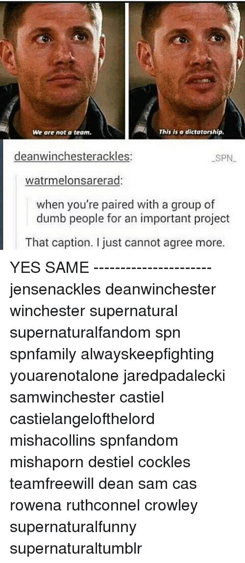 Dumb, Memes, and Supernatural: We are not a team.  This is a dictatorship.  deanwinchesterackles  SPN  watrmelonsarerad:  when you're paired with a group of  dumb people for an important project  That caption. I just cannot agree more. YES SAME ---------------------- jensenackles deanwinchester winchester supernatural supernaturalfandom spn spnfamily alwayskeepfighting youarenotalone jaredpadalecki samwinchester castiel castielangelofthelord mishacollins spnfandom mishaporn destiel cockles teamfreewill dean sam cas rowena ruthconnel crowley supernaturalfunny supernaturaltumblr