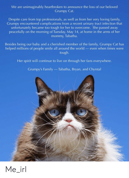 Grumpy Cat: We are unimaginably heartbroken to announce the loss of our beloved  Grumpy Cat.  Despite care from top professionals, as well as from her very loving family,  Grumpy encountered complications from a recent urinary tract infection that  unfortunately became too tough for her to overcome. She passed away  mommy, Tabatha.  Besides being our baby and a cherished member of the family, Grumpy Cat has  helped millions of people smile all around the world _even when times were  tough.  Her spirit will continue to live on through her fans everywhere.  Grumpy's Family  Tabatha, Bryan, and Chyrstal Me_irl