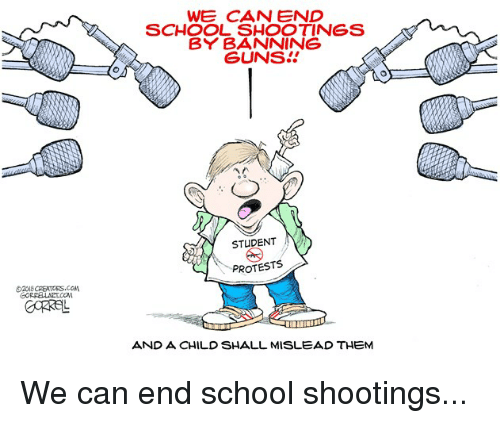 School, Conservative, and Student: WE CAN END  SCHOOL SHOOTINGS  BY BANNING  SUNS!  STUDENT  PROTESTS  AND A CHILD SHALL MISLEAD THEM
