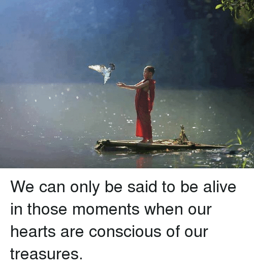 Alive, Memes, and Heart: We can only be said to be alive in those moments when our hearts are conscious of our treasures.