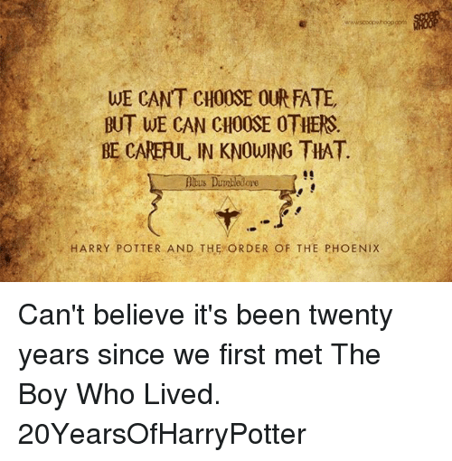 the phoenix: WE CANT CHOOSE OUR FATE  BUT WE CAN CHOOSE OTHERS.  BE CARERUL IN KNOWING THAT.  bus Dumbledore  HARRY POTTER AND THE ORDER OF THE PHOENIX Can't believe it's been twenty years since we first met The Boy Who Lived. 20YearsOfHarryPotter