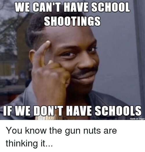 School, Imgur, and Advice Animals: WE CAN'T HAVE SCHOOL  SHOOTINGS  IFWE DON'T HAVE SCHOOLS  made on imgur You know the gun nuts are thinking it...