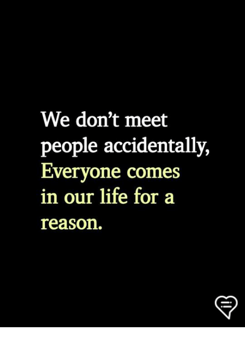 Life, Memes, and Reason: We don't meet  people accidentally,  Everyone comes  in our life for a  reason.