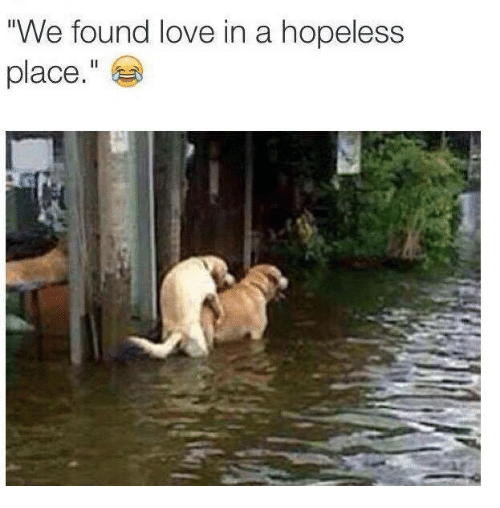 """We Found Love: We found love in a hopeless  place."""""""