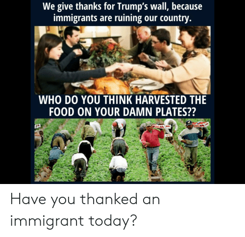 Trumps Wall: We give thanks for Trump's wall, because  immigrants are ruining our country.  WHO DO YOU THINK HARVESTED THE  FOOD ON YOUR DAMN PLATES?? Have you thanked an immigrant today?