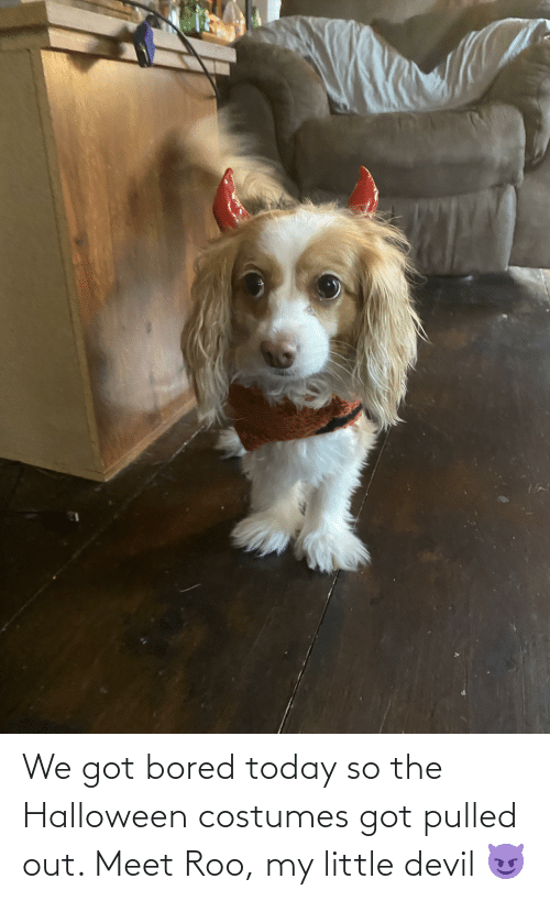 Pulled Out: We got bored today so the Halloween costumes got pulled out. Meet Roo, my little devil 😈