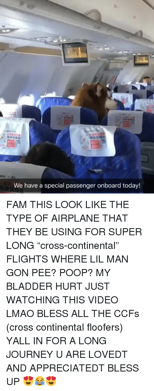"""Just Watching: We have a special passenger onboard today! FAM THIS LOOK LIKE THE TYPE OF AIRPLANE THAT THEY BE USING FOR SUPER LONG """"cross-continental"""" FLIGHTS WHERE LIL MAN GON PEE? POOP? MY BLADDER HURT JUST WATCHING THIS VIDEO LMAO BLESS ALL THE CCFs (cross continental floofers) YALL IN FOR A LONG JOURNEY U ARE LOVEDT AND APPRECIATEDT BLESS UP 😍😂😍"""