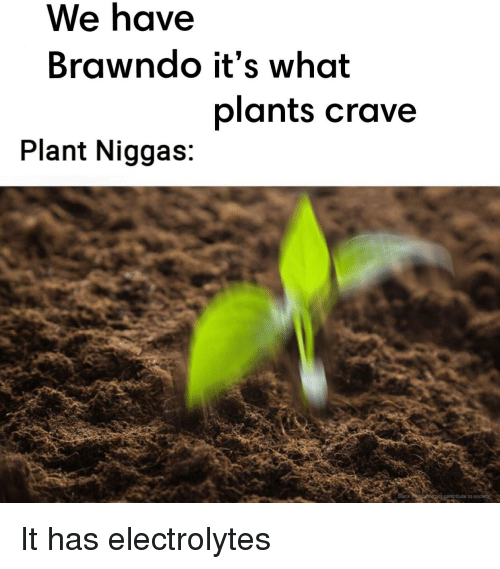 Dank Memes, Electrolytes, and What: We have  Brawndo it's what  plants crave  Plant Niggas: