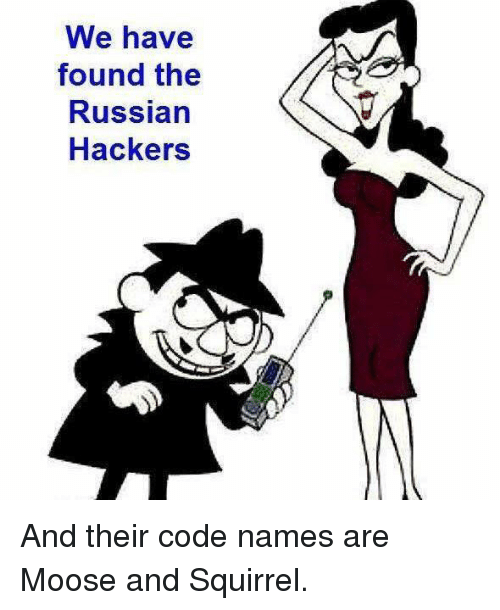 Code Names: We have  found the  Russian  Hackers And their code names are Moose and Squirrel.