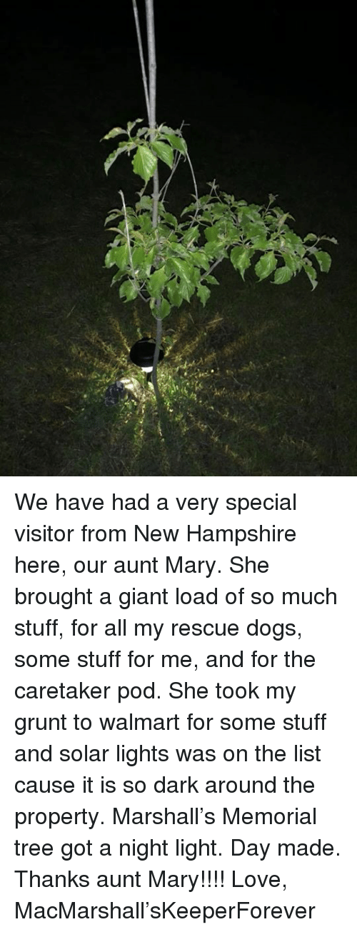Dogs, Love, and Memes: We have had a very special visitor from New Hampshire here, our aunt Mary. She brought a giant load of so much stuff, for all my rescue dogs, some stuff for me, and for the caretaker pod. She took my grunt to walmart for some stuff and solar lights was on the list cause it is so dark around the property. Marshall's Memorial tree got a night light. Day made. Thanks aunt Mary!!!!   Love, MacMarshall'sKeeperForever