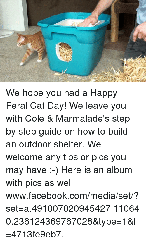 Cats, Facebook, and Memes: We hope you had a Happy Feral Cat Day! We leave you with Cole & Marmalade's step by step guide on how to build an outdoor shelter.  We welcome any tips or pics you may have :-)  Here is an album with pics as well www.facebook.com/media/set/?set=a.491007020945427.110640.236124369767028&type=1&l=4713fe9eb7.