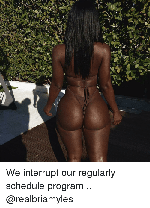 Memes, 🤖, and Interrupt: We interrupt our regularly schedule program... @realbriamyles