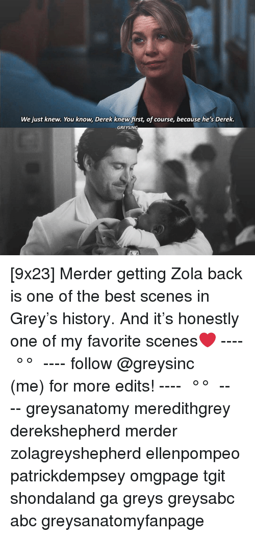 greys: We just knew. You know, Derek knew first, of course, because he's Derek.  GREYSING [9x23] Merder getting Zola back is one of the best scenes in Grey's history. And it's honestly one of my favorite scenes❤️ ---- ≪ °✾° ≫ ---- follow @greysinc (me) for more edits! ---- ≪ °✾° ≫ ---- greysanatomy meredithgrey derekshepherd merder zolagreyshepherd ellenpompeo patrickdempsey omgpage tgit shondaland ga greys greysabc abc greysanatomyfanpage