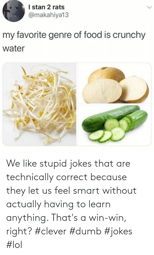 Correct: We like stupid jokes that are technically correct because they let us feel smart without actually having to learn anything. That's a win-win, right? #clever #dumb #jokes #lol