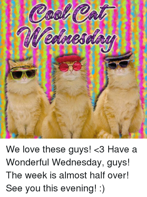 Have A Wonderful Wednesday: We love these guys! <3 Have a Wonderful Wednesday, guys! The week is almost half over! See you this evening! :)