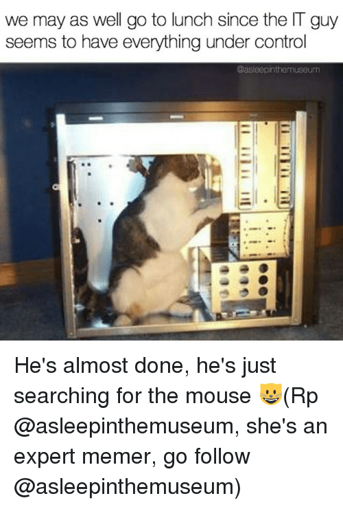 Memerized: we may as well go to lunch since the IT guy  seems to have everything under control  @asleepinthemuseum He's almost done, he's just searching for the mouse 😺(Rp @asleepinthemuseum, she's an expert memer, go follow @asleepinthemuseum)