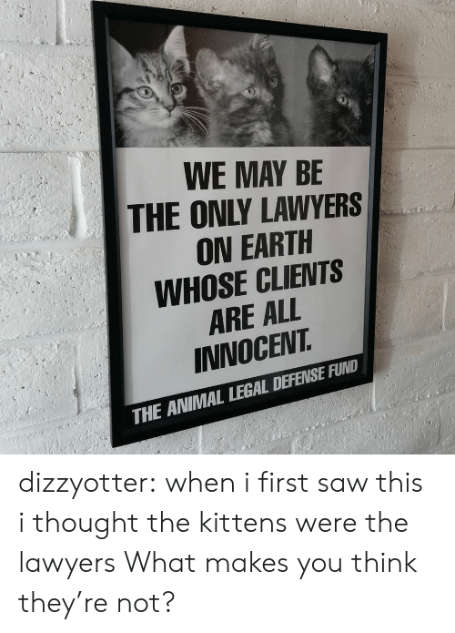 Kittens: WE MAY BE  THE ONLY LAWYERS  ON EARTH  WHOSE CLIENTS  ARE ALL  INNOCEVT  THE ANIMAL LEGAL DEFENSE FUND dizzyotter: when i first saw this i thought the kittens were the lawyers  What makes you think they're not?