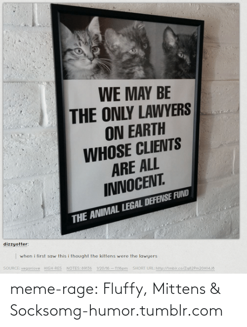 meme: WE MAY BE  THE ONLY LAWYERS  ON EARTH  WHOSE CLIENTS  ARE ALL  INNOCENT  THE ANIMAL LEGAL DEFENSE FUND  dizzyotter:  when i first saw this i thought the kittens were the law  SOURCE: veganlove  yers  HIGH-RES  NOTES: 89136  1/20/16-11:16pm  SHORT URL:hitp:/Ambir.co/z  m20H14J& meme-rage:  Fluffy, Mittens & Socksomg-humor.tumblr.com