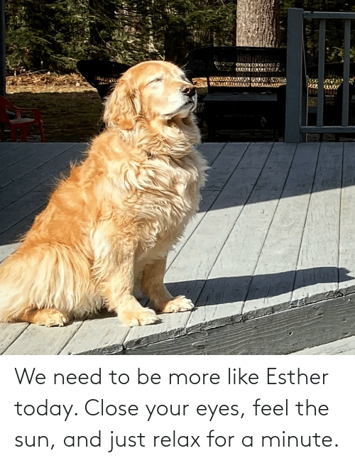 close your eyes: We need to be more like Esther today. Close your eyes, feel the sun, and just relax for a minute.