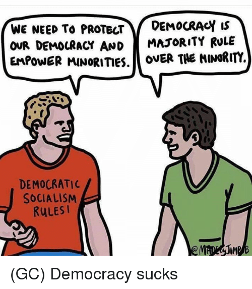 Memes, Socialism, and Democracy: WE NEED To PROTECTDEMOCRACY Is  OUR DEMOCRACY AND MAJORITY RULE  EMPOWER MINORITIES.ovER THE HINORITY.  DEMOCRATIC  SOCIALISM  RuLESI (GC) Democracy sucks