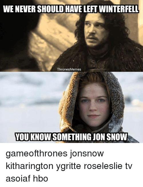 Hbo, Memes, and Jon Snow: WE NEVER SHOULDHAVE LEFT WINTERFELL  Thrones Memes  YOU KNOWSOMETHING JON SNOW gameofthrones jonsnow kitharington ygritte roseleslie tv asoiaf hbo